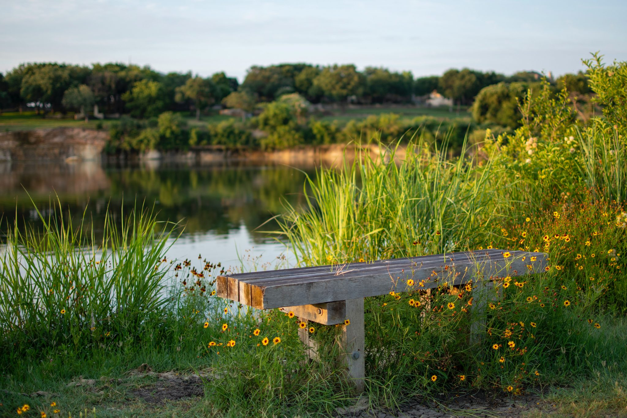 Pay a visit to Spring Lake Park!